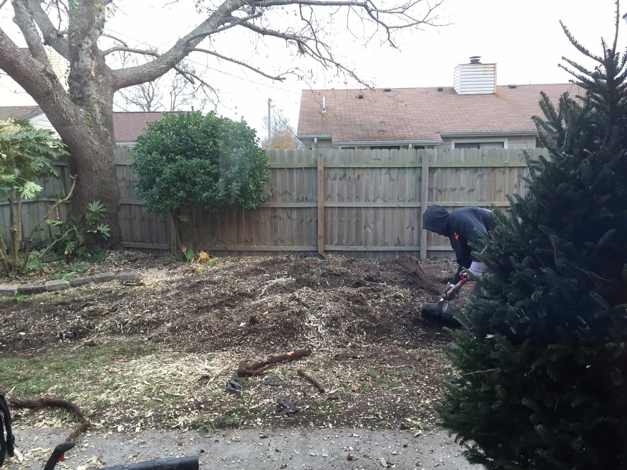 stumpbusters tree service newport news va